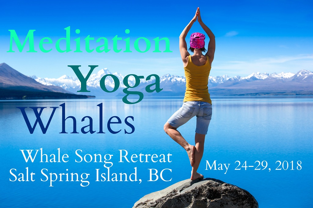 Whale Song: Meditation and Eco-Tour Retreat on Salt Spring Island, May 24-29th, 2018